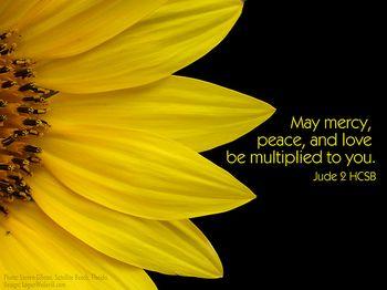 Mercy peace