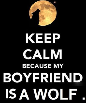 Keep calm boyfriend wolf